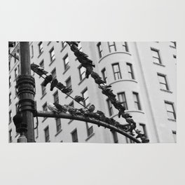 Birds on a Wire (Columbus Circle) Rug