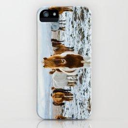 Nordic Wild iPhone Case