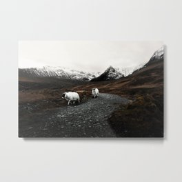 The Two Mountaineers Metal Print