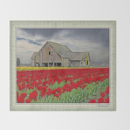 RED TULIPS AND BARN SKAGIT FLATS Throw Blanket