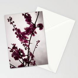 March Notes Stationery Cards