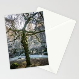 Frost in Tipperary Park Stationery Cards