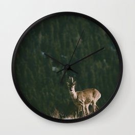 Hello spring! - Landscape and Nature Photography Wall Clock
