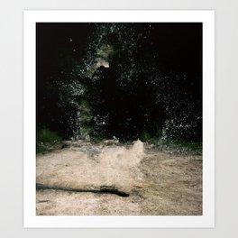 R.Signer Art Print