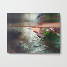 Autumn Underwater no.1 Metal Print