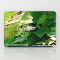 snake iPad Cases featuring Snake by Stecker Photographie