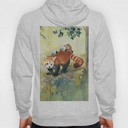 Red Panda Family Hoody