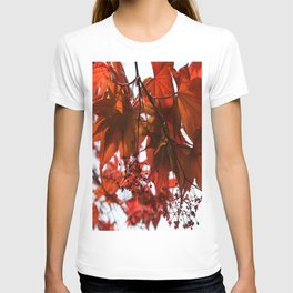 Red Maple Leaves T-shirt
