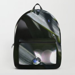 Dances With Water Backpack