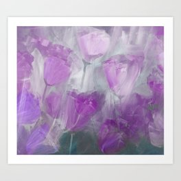 Shades of Lilac Art Print
