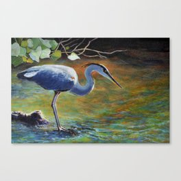 Great Blue Heron Fishing The Backwater Canvas Print