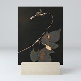Snakewinder Hops Botanical Lumen Print Mini Art Print