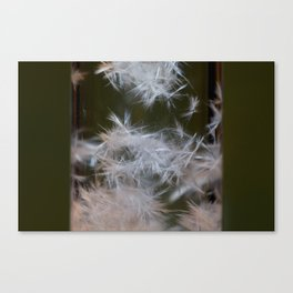Fluffy crystals pt.2 Canvas Print