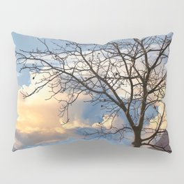 trees without leaves in the fall Pillow Sham