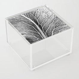 Black And White Leaf Acrylic Box