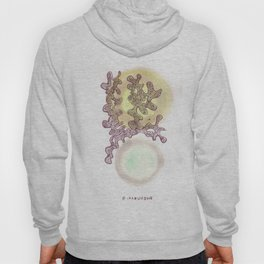 17 // Abstract 9 March 2017 | Abstract Shapes Art Colour Hoody