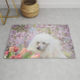Spring Poodle dog Rug