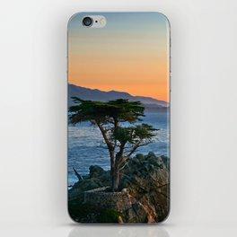 Cypress iPhone Skin