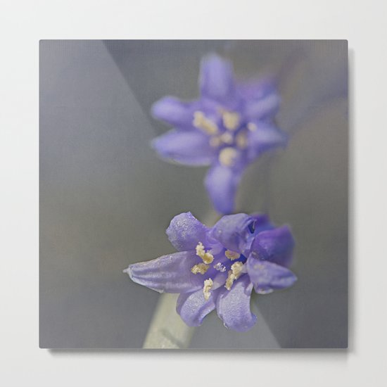 Woodland Bluebell Metal Print