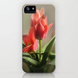 Dreamy Tulips iPhone Case