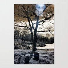 REDD'S POND Canvas Print