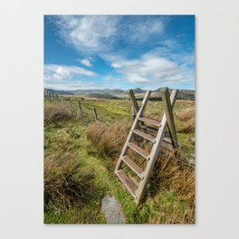 Take The Path Canvas Print