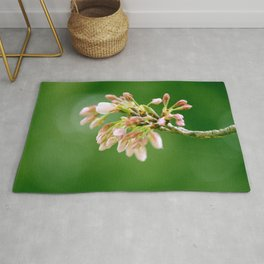 Pink Cherry Blossom Buds Nature Photography Rug
