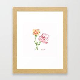 Orange and Pink Carnations Framed Art Print