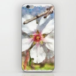 Almond Blossom Study Watercolor iPhone Skin