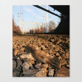 Deer Hoof Canvas Print