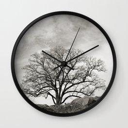 Devil's Den Tree Wall Clock