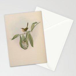 Tailor bird2 Stationery Cards