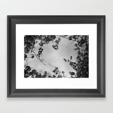 spring black & white Framed Art Print