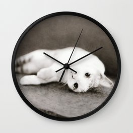 STREET CAT Wall Clock