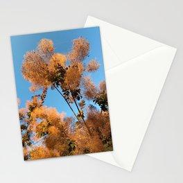 Flowering Smoketree/Smoke Bush Stationery Cards
