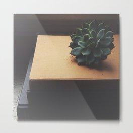 Succulent (2) Metal Print