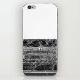 Trapped Liberty iPhone Skin