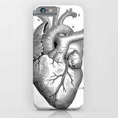 ANATOMY OF A HEART iPhone 6s Slim Case