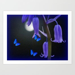 Bluebells an Butterflies Art Print