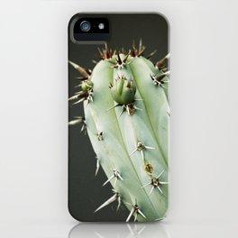 Cactus in Mid City  iPhone Case
