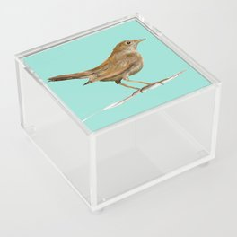 Animals endangered by HS2 (#stophs2) Acrylic Box