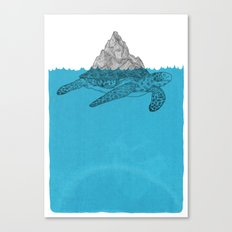 Turtle Canvas Print