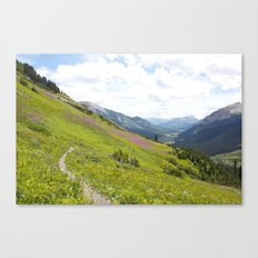 Crested Butte 2013 Canvas Print