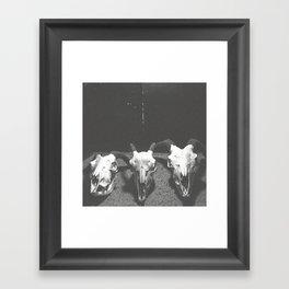 Carcass, 02 Framed Art Print
