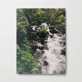 Lush Stream Metal Print
