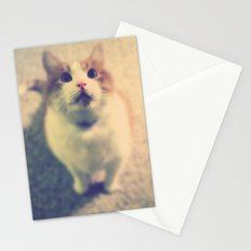 Pink Nose Stationery Cards