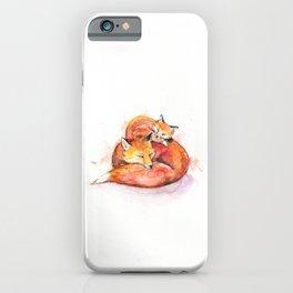 Foucault's Foxes iPhone Case