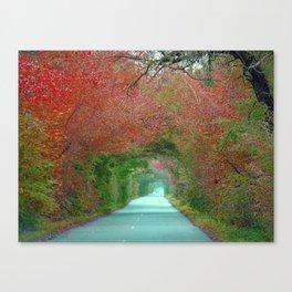 Tunnel Canvas Print
