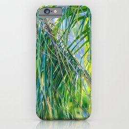 Palm at Eleven Eastern iPhone Case