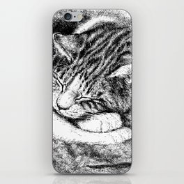 Sleeping Cat with Mouss iPhone Skin